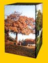 Q-Frame CS300 - strom